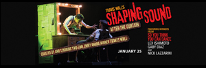 shaping-sound-side-300x100.jpg