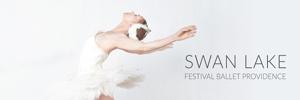 swan-side.jpg