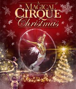 magic-cirque-245x285.jpg